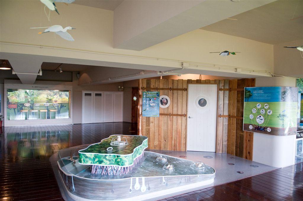 紅樹林生態展示館照片