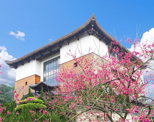 緣道觀音廟主體建築及櫻花樹