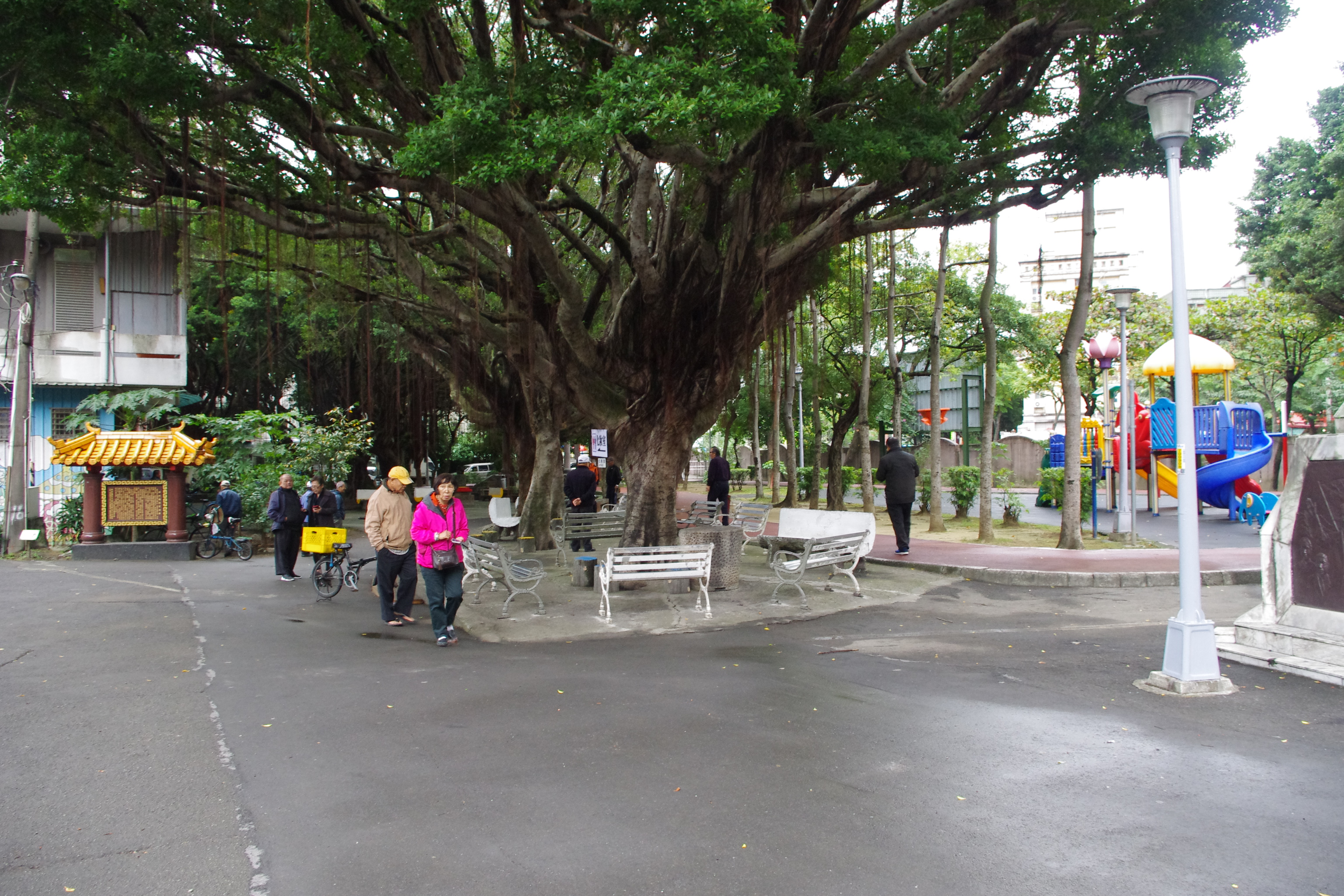 板橋中山公園