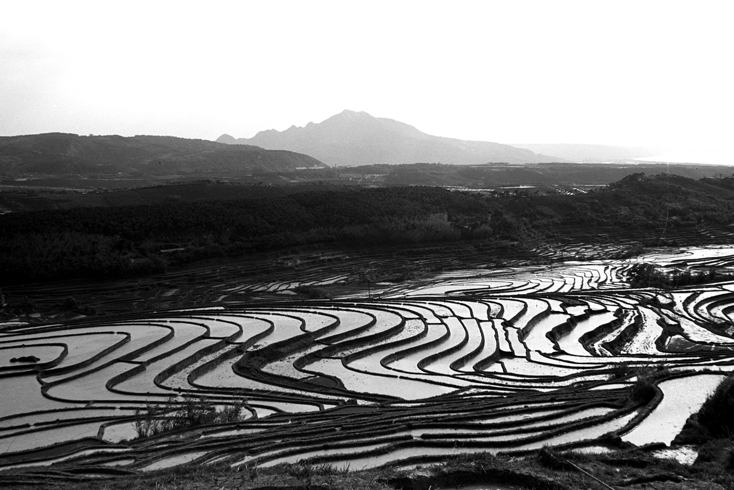 觀音山麓02-蔡坤煌醫師攝影作品