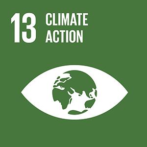 採取緊急措施以因應氣候變遷及其影響