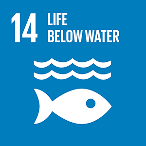 保育及永續利用海洋與海洋資源,以確保永續發展