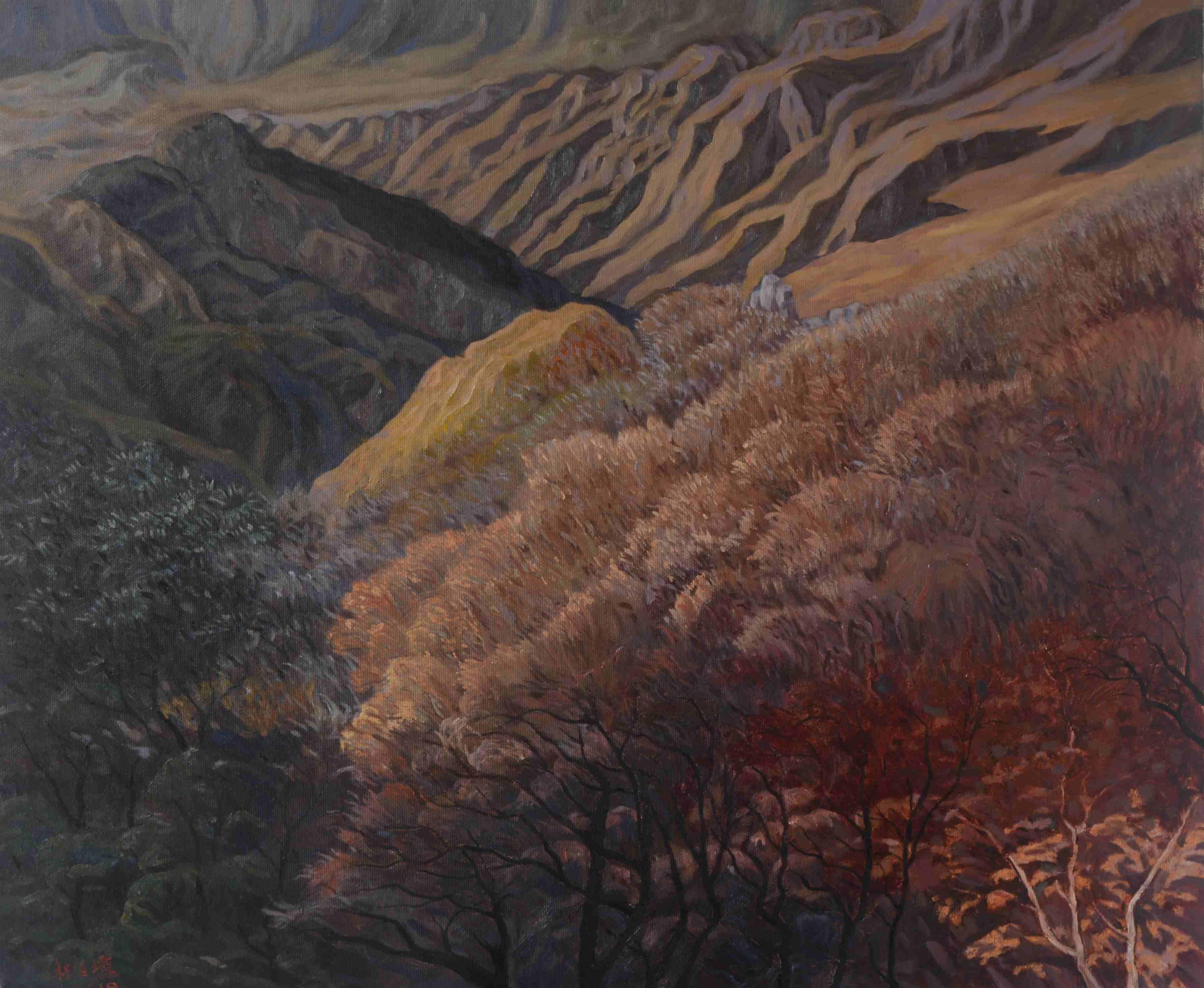 藝術家林伯壎、蔡旻芸接連開展 跨媒材表達環境新思維