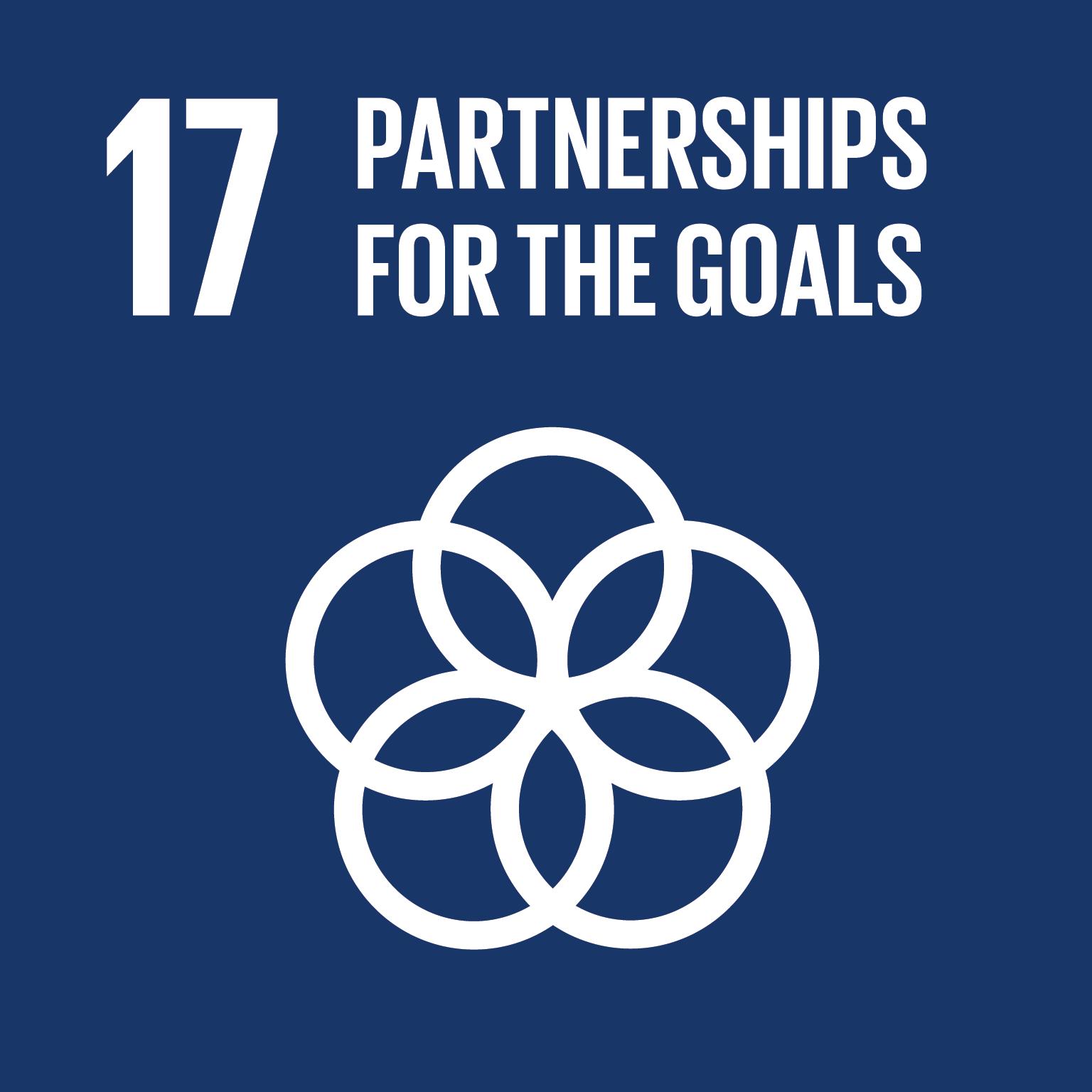 強化永續發展執行方法及活化永續發展全球夥伴關係